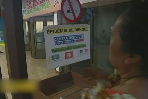Prévention de la dengue à l'aéroport de Wallis