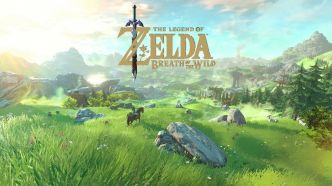 The Legend of Zelda Breath of the Wild : on répond à vos questions !