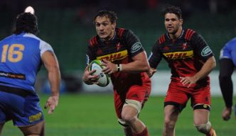 Top 14: Toulouse recrute le Sud-Africain Rynhardt Elstadt