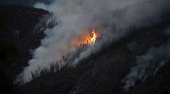 Etats-Unis: Un incendie menace le parc californien de Yosemite