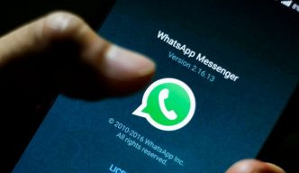 Fake news: WhatsApp limite le partage de messages