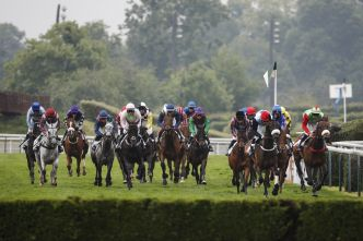 Le pur-sang Carriacou remporte le Grand Steeple-chase de Paris