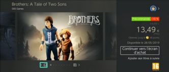 Brothers : A Tale of Two Sons débarque ce mois-ci sur Nintendo Switch
