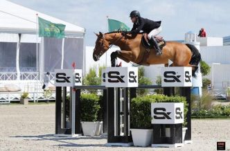Equitation : son cheval s'est revendu un million de dollars !