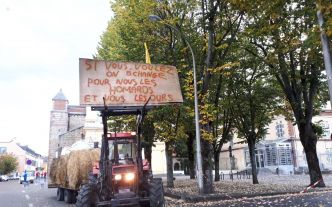 Ours: une manifestation à Tarbes ce lundi