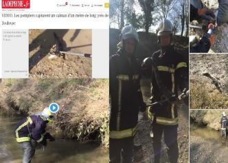 Après la panthère noire sur les toits capturé en octobre 2019 dans le nord de France ,les pompiers  capturent un caïman (petit alligator) d'un mètre de long près de Toulouse sur les bords [...]