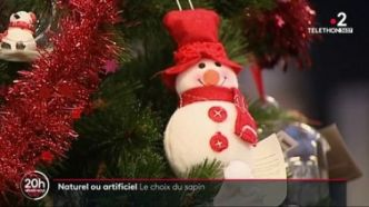 Sapin de Noël : naturel ou artificiel ?