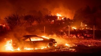 Incendies en Californie : la stratégie de prévention